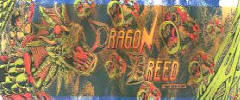 Dragon Breed Arcade Games For Sale