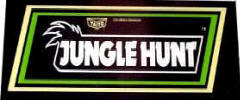Jungle Hunt Arcade Games For Sale