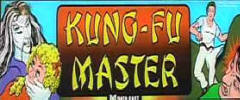 Kung Fu Master Arcade Games For Sale