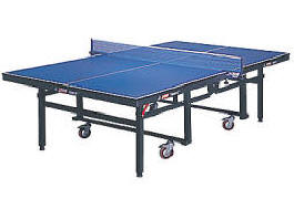 DHS Expert Compact T1024 Fold Up Ping Pong Table Tennis By DHS America From  BMI Gaming